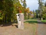 Bohemian Paradise - Turnov (wooden statue)